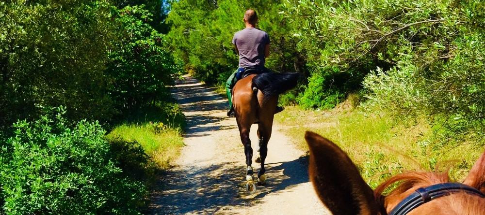 balade-cheval