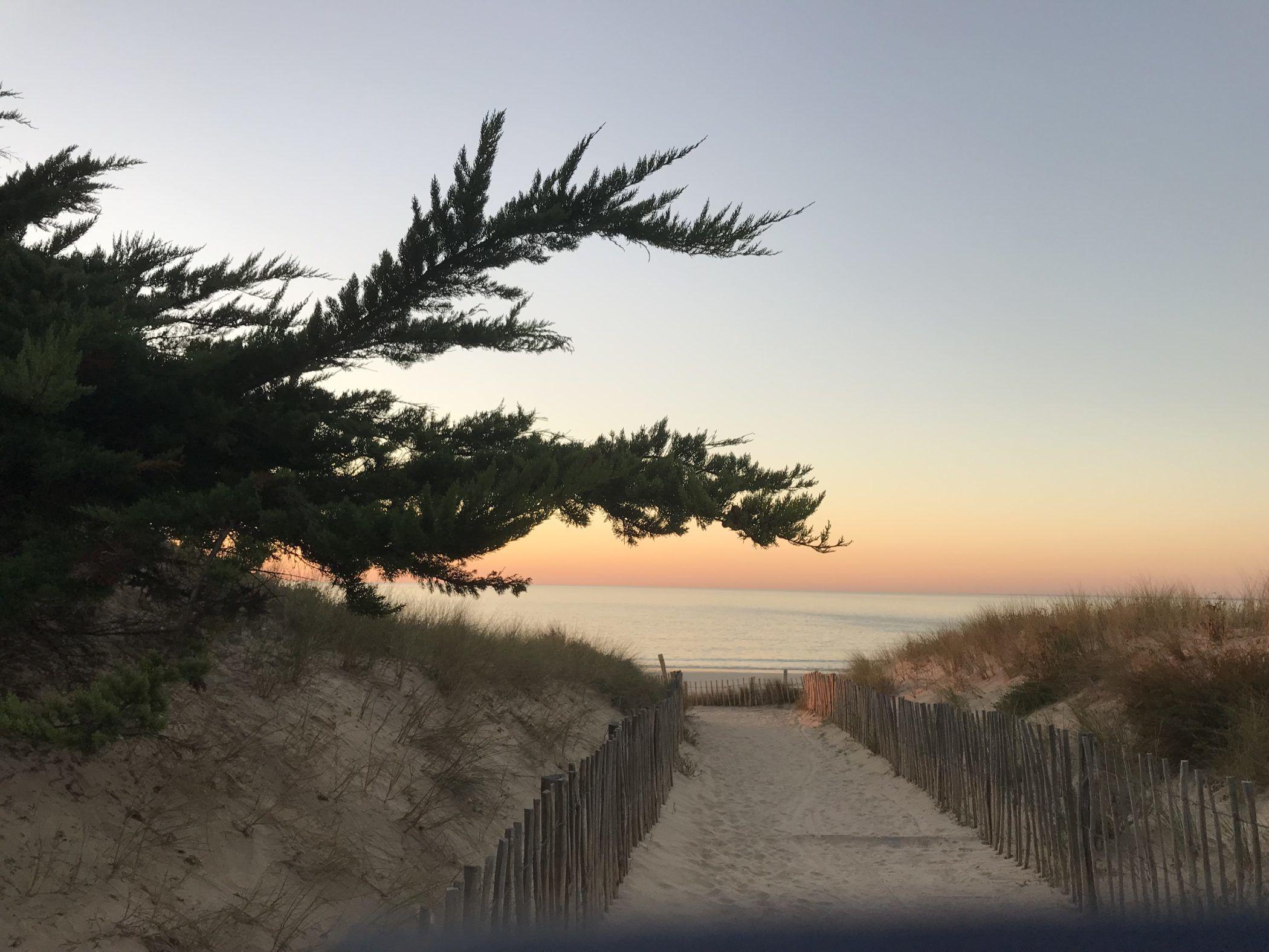 La Grainetière Ile De Ré Avis camping *** ile de ré - aux portes-en-ré | seasonova