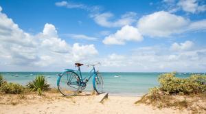 rando vélo Ile de Ré